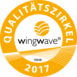 wingwave®-Coaching-Konzept, Herausragendes Leisten, wingwave®-Methode, wingwave®-Intervention, Belief-Coaching, Know-how-Coaching, Ressourcen-Coaching, Glaubenssätze