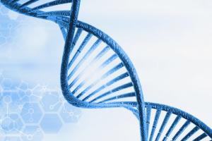 DNA als Metapher für Unternehmenskultur, Bahnung von Fortschritt und digitale Transformation