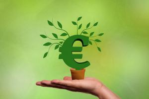 Grünes Euro Symbol auf Hand als Metapher für nachhaltige Finanzierung, Finanzierungsmittel, Erfolgsgeschichten, Beratung von mindful BWL freie Betriebswirte, Innenfinanzierung, öffentliche Geldgeber