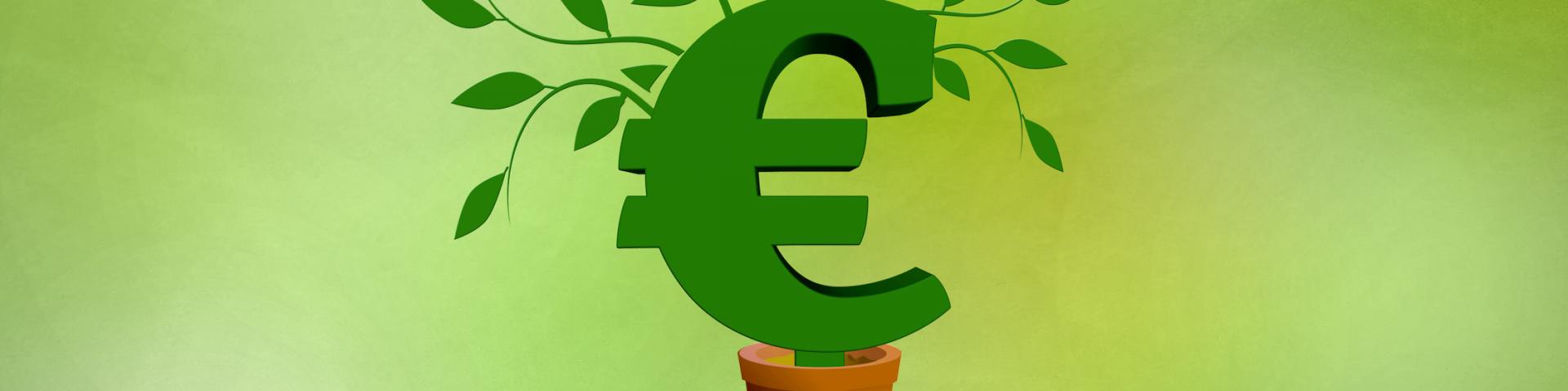Grünes Euro Symbol auf Hand als Metapher für nachhaltige Finanzierung, Finanzierungsmittel, Beratung von mindful BWL freie Betriebswirte, Innenfinanzierung, öffentliche Geldgeber, Fördermittel für Unternehmen, Bankenfinanzierung, Banken, Sparkassen, Crowdfunding, public funders, subsidies, funding