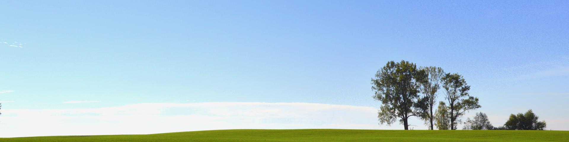 MINDFUL BWL freie Betriebswirte, systemisch, innovativ. substantiell. Erfolgsgeschichten, Businesscoach, wingwave® Methode, Referenzen, Führungskraft, Mittelstand, Unternehmer