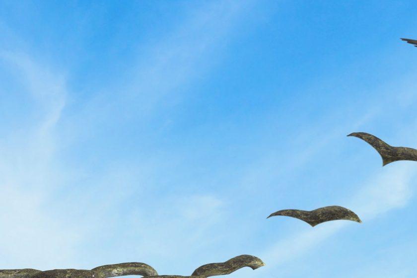 New Work Empowerment symbolisiert durch einen Seevogel der sich von einer Kette löst - MINDFUL BWL freie Betriebswirte